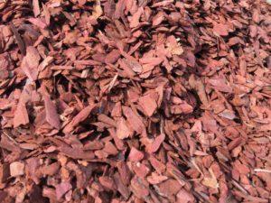 кора лиственницы